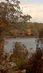 Sunfish Pond Delaware Water Gap
