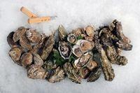 Super-bowl-oyster-sampler_MED
