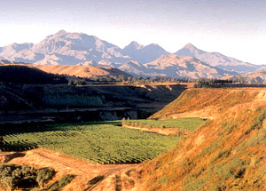 Awatere-Valley