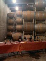 Cellar Tasting Room