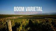 BoomVarietal