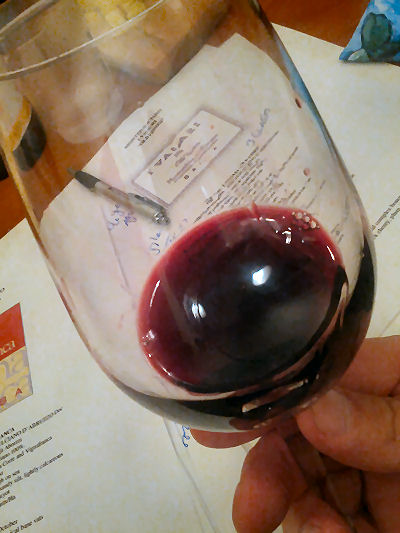 Contemplate the Wine