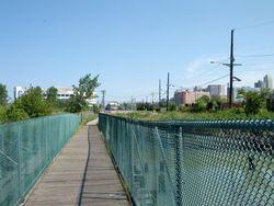 Bridge 600