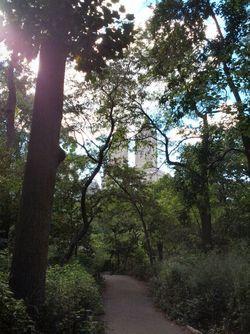 Path NY