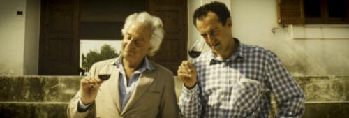 Admiring the wine