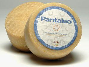 Pantaleo Sargegna