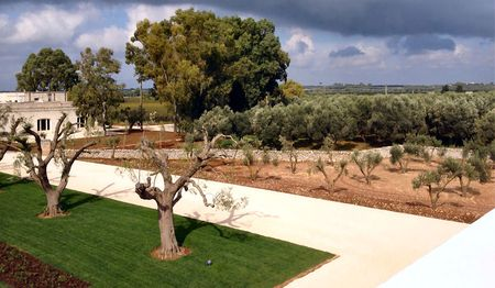 Zonin Masseria Altemura 1000 from the roof