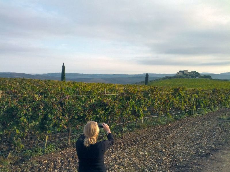 Shooting the Vines