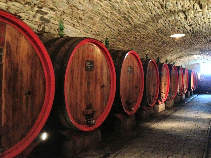 Castello D'Albola Cellar 2