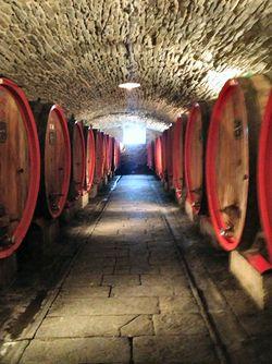 Castello D'Alba cellar6