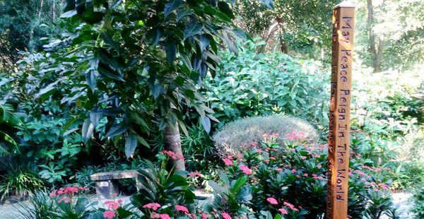 Morikami Japanese Gardens Photos