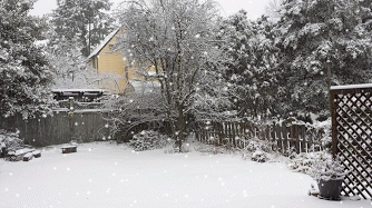 20140203_075223-SNOW