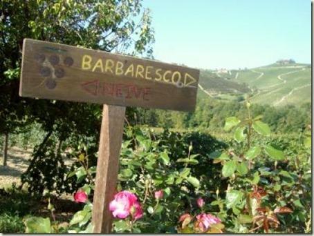 Cantina Sociale of Produttori del Barbaresco