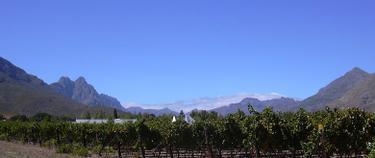 Stellenbosch_wide_1